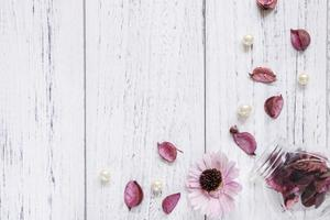 Flower and petals on white wood photo