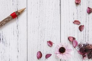 Pencil and petals on white wood photo