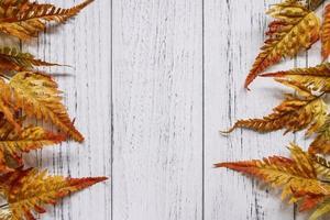 Autumn leaves frame on white wood photo