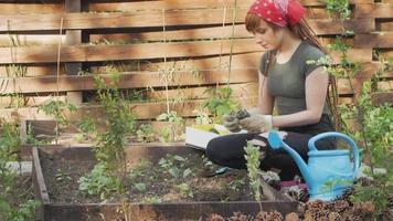 Young woman farmer work in garden video