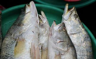Fresh raw seafood at traditional asian market photo