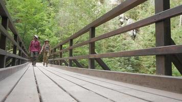couple marche sur le pont de bois video