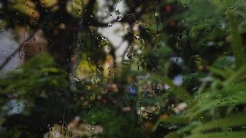 falling raindrops on the glass window video