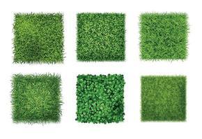 Green Grass Realistic Set vector