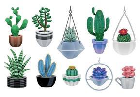 Cactus Plants Icon Set vector