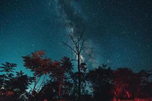 Milky way and night stars in the fields photo