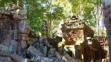 Ta Prohm Temple in Angkor wat complex, Siem Reap Cambodia. photo