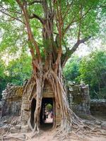 Ancient ruins of Ta Som temple door gate ruin with jungle tree photo