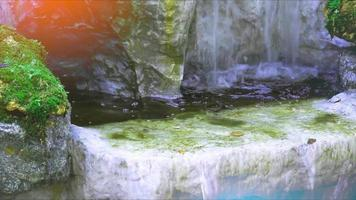 waterfall and green moss on the rock with sunlight in national park video