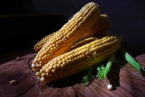 Cobs of corn with leaves on wooden background. Fresh Vegetable food photo