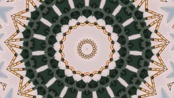 Ethnic abstract background. Botanical illusion, floral background. video