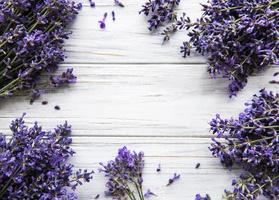 Fresh flowers of lavender bouquet, top view on white wooden background photo