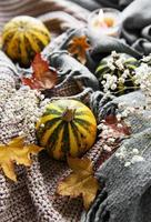 Autumn pumpkins, knitted scarf, maple leaves and candle. photo
