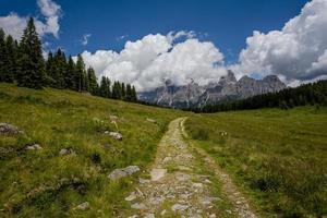 Ancient road among the green pastures at the Calaita lake in San Martino Di Castrozza, Trento, Italy photo