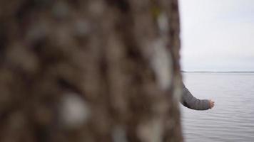 vue arrière d'une femme asiatique debout et s'étirant au bord du lac video