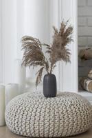 surtido de decoración de jarrones de plantas caseras foto