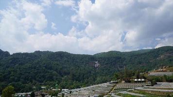 jardin de pépinière timelapse sur la colline avec un ciel bleu en thaïlande video