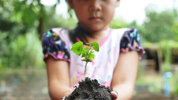 gros plan d'une main d'enfant tenant un semis dans le jardin. video