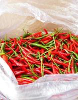 Red and green chili in plastic bag in Thailand photo
