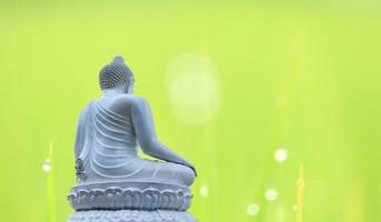 Statue buddha white  on natural blur background photo