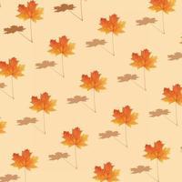 Pattern autumn maple leaf orange-red on orange background photo