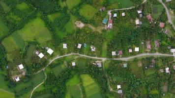 maisons de village et jardins vue de dessus video