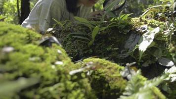 colegial usando lupa para ver os detalhes das plantas verdes. video