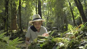 colegial usa uma lupa para explorar a natureza na floresta. video