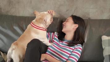 Frau macht glücklich Spaß, Hund, französische Bulldogge zu spielen und zu necken. video