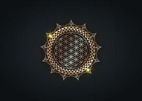 Flower of Life, Yantra Mandala in the lotus flower, Sacred Geometry vector