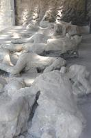 Plaster Casts in ancient city of Pompei photo