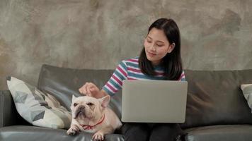 casual freelance asiática fofa mulher trabalhando em casa com o cachorro dela. video