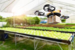 Cultivo de hortalizas hidropónicas drone en interior granja moderna foto