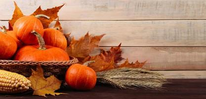 Autumn harvest and Thanksgiving. Ripe pumpkins, corn and wheat photo