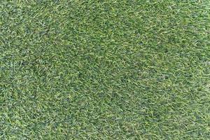 fondo de textura de hierba verde foto