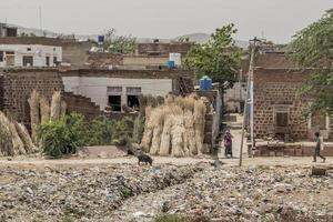 Garbage, poverty and heat in Rajasthan India. photo