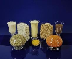 Wheat and spike photo