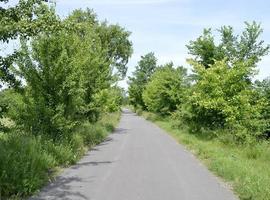 Carretera asfaltada vacía en el campo foto