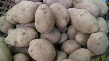 bunch of fresh harvested organic Asian potatoes with dirt at market photo