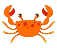 red crab on a white background. vector