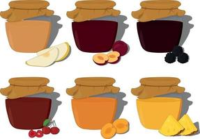 Fruit and berry jam in glass jar collection vector illustration