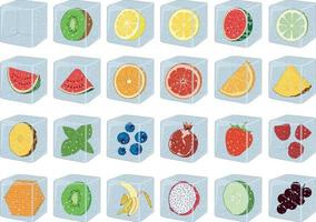 Ice cubes for drinks with fruits and berries inside vector