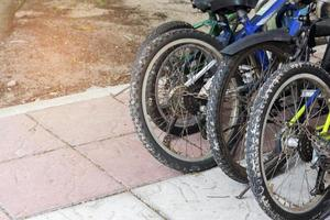 Group of bicycles photo