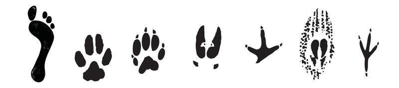 Human foot print and animal footprint vector