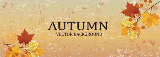Autumn background design with watercolor brush texture, vector