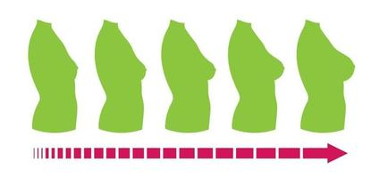 Breast size, female body silhouette, side view vector
