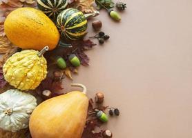fondo de otoño con calabazas multicolores foto