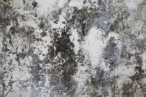 Superficie enlucida vieja en blanco y gris. foto
