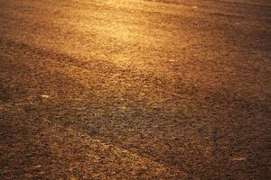 Paved road in the rays of the evening sun photo