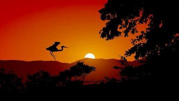 Beautiful Sunset Silhouette With Bird vector